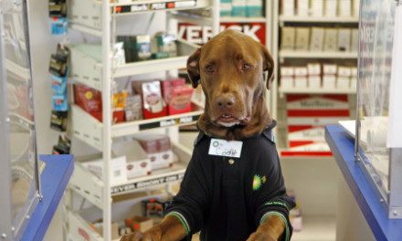 BP gas station has new clerk and it's a DOG!